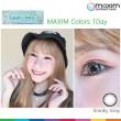 Smoky Gray - MAXIM Colors 1Day
